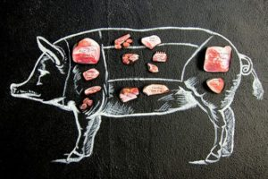 Pig diagram